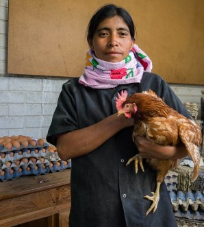 Luisa from egg farm